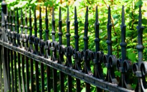 burenrecht erfafscheiding overhangende takken erfgrens